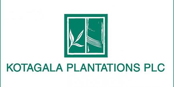 Kotagala Plantation